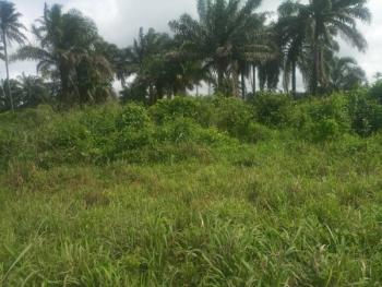 4 Plots of Land with Complete Documents and Deed of Conveyance, Ali Ezi Omuogboro, Ikwerre, Rivers, Commercial Land for Sale