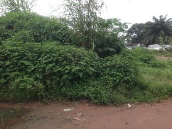 1 Plot of Land, Along Onitsha Road, New Owerri, Owerri, Imo, Mixed-use Land for Sale