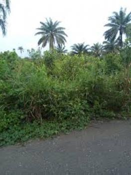 2000 Plots of Land, Obeama Afam, Oyigbo, Rivers, Residential Land for Sale