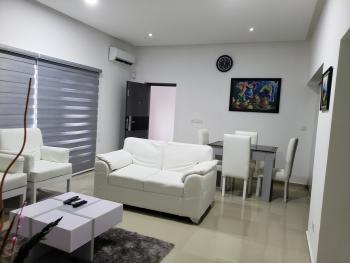 Luxury and with Lovely Portable Living Room with Inbuilt Kitchen, Off Christ Avenue, Lekki Phase 1, Lekki, Lagos, Flat Short Let