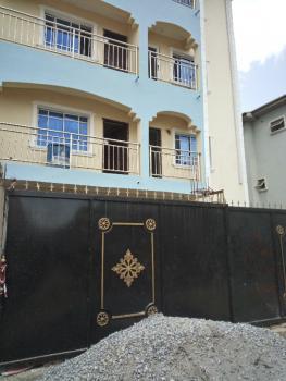 Executive and Super Mini Flat (brand New House ), Lawanson, Surulere, Lagos, Mini Flat for Rent