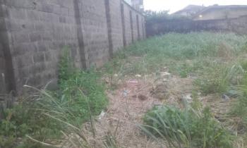 Full Plot of Fenced Gated Land, Elepe Royal Estate, Off Sholebo Aga, Ebute, Ikorodu, Lagos, Residential Land for Sale
