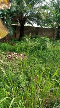 2 Residential Plots Fully Fenced, Osokoya Estate, Ibafo, Ogun, Residential Land for Sale
