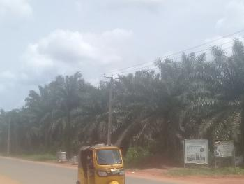 6 Plots of Land, Aruogba Airport Road, Igueben, Edo, Residential Land for Sale