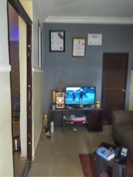 1 Bedroom Flat with C of O Title (negotiable), Off Aminu Kano Street, Wuse 2, Abuja, Mini Flat for Sale