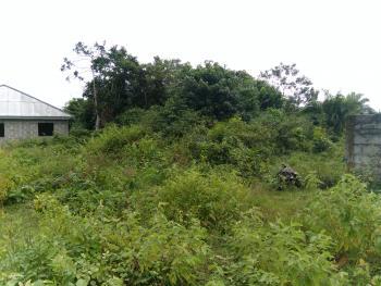 Dry Land Just Behind Amen Estate, Eleko, Ibeju Lekki, Lagos, Mixed-use Land for Sale