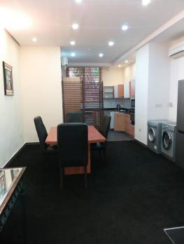 One Bedroom Super Charged Studio Apartment for Lease., Banana Island, Ikoyi, Lagos, Mini Flat for Rent