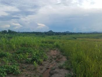 Accessible 3 Hectares (7.5acres) of Multiple Use Land in a Fantastic Location with Unencumbered, Amac R of O, Behind Dunamis International Gospel Center, Lugbe District, Abuja, Mixed-use Land for Sale