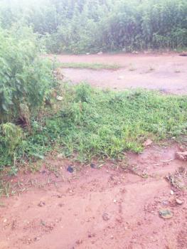 2000sqm Size of Land at a Strategic Area, Emeka Nwaogu Close, Asokoro District, Abuja, Mixed-use Land for Sale