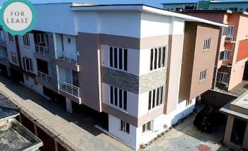 Executive 5 Bedrooms Terraced Duplex, Oral Estate, 2nd Toll Gate, Lekki, Lagos, Terraced Duplex for Rent