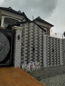 Newly Built 2 Bedroom Flat, Off Folagoro Road, Fola Agoro, Yaba, Lagos, Flat for Rent
