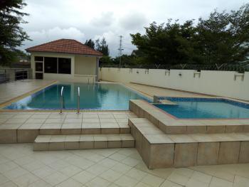 Waterfront Luxury 2 Bedroom Pent-flat + Bq, Off 3rd Avenue, Banana Island, Ikoyi, Lagos, Flat for Rent