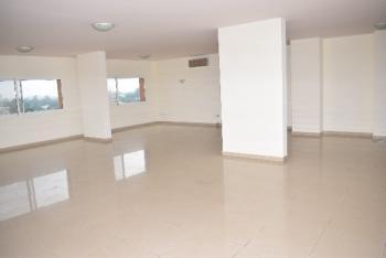 Tastefully Finished 3 Bedroom Penthouse, Glover Road, Old Ikoyi, Ikoyi, Lagos, Flat for Rent