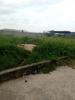 2 Plots of Land Facing  Expressway, Eputu, Ibeju Lekki, Lagos, Commercial Land for Rent