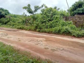 100 X 100 Land, Amagba Community, Benin, Oredo, Edo, Residential Land for Sale