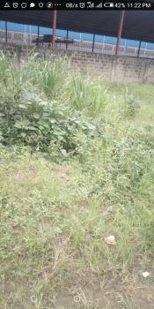 700sm Size of Land  with Registered Survey, Makuolu, Ogba, Ikeja, Lagos, Mixed-use Land for Sale