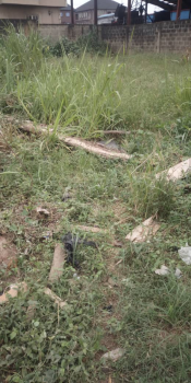 500sqm of Land, Off College Road, Ogba, Ikeja, Lagos, Mixed-use Land for Sale