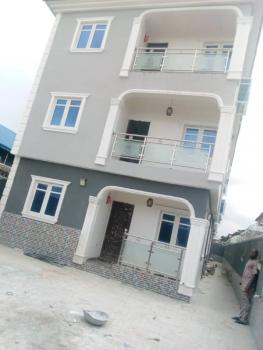 Newly Built 2 Bedroom Flats All Tiles, Pop, 2 Toilets, Ipaja, Lagos, Flat for Rent
