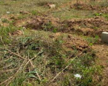 Land, Idunmwungha Community, Egba Opposite Benin-auchi Expressway, Uhunmwonde, Edo, Mixed-use Land for Sale
