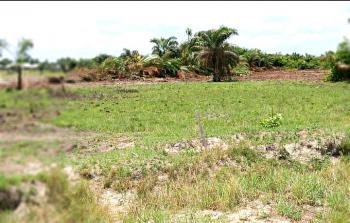 Dry Secured, Fenced and Documented Land, Brooklyn Court Estate Road, Ibeju Lekki, Lagos, Residential Land for Sale