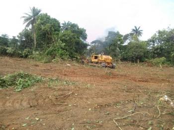 Land, Atan Ota, Ado-odo/ota, Ogun, Mixed-use Land for Sale