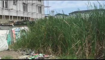 500sqm Land Is Available, Ikate Elegushi, Lekki, Lagos, Residential Land for Sale