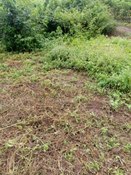 1/2 Plot of Land, Aba Odo Road, Egbeda, Oyo, Commercial Land for Sale
