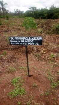 100% Dry Excised Land  in a Serene Environment, Royal Flex Estate, Otolu, Lekki Free Trade Zone, Akodo Ise, Ibeju Lekki, Lagos, Mixed-use Land for Sale