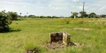 Half Plot of Land Commercial Property, Ibeju Lekki, Lagos, Plaza / Complex / Mall for Sale