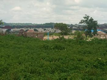 Vegas Court Extension, Adjacent Dunamis Church Airport Road, Lugbe District, Abuja, Residential Land for Sale
