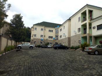 Luxury 2 Bedroom Serviced Apartment, Ahmed Musa Crescent, Jabi, Abuja, Mini Flat for Rent