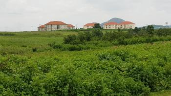 8.2 Hectares Housing Estate Land on The Expressway, Before Immigration Office, Kyami, Abuja, Residential Land for Sale