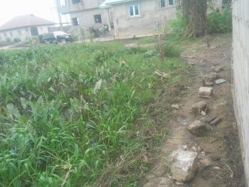 Very Suitable and Well Positioned Semi Dried Corner Piece Full Plot, Just Beside The Fence of Meredian Park Estate, Awoyaya, Ibeju Lekki, Lagos, Mixed-use Land for Sale