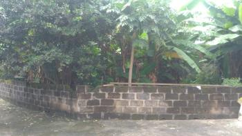 Solid Land Strategically Located, Oremeji Street, Agodo, Egbe, Lagos, Residential Land for Sale