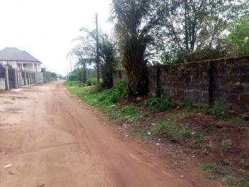 200ft By 200ft Land, Iyekogba Aruogba Road, Benin, Oredo, Edo, Mixed-use Land for Sale