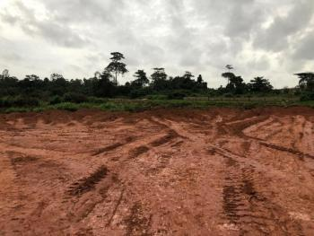 Plot of Land, Opp C & S Church Ajanakun Area Off Idowu Egba, Alimosho, Lagos, Residential Land for Sale