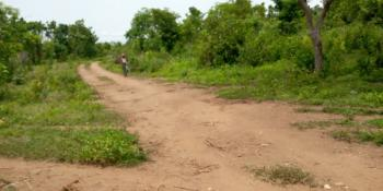 Over 11,000 Acres of Virgin Farm Land with Big Dam, Ijapa Village Oke Ogun Area Ipapo Town, Itesiwaju, Oyo, Industrial Land for Sale