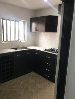 a Squeaky Clean Serviced Apartment, with Air-conditioning, Inbuilt Gas Cooker, Generator, Ibb Way, Maitama District, Abuja, Mini Flat for Rent