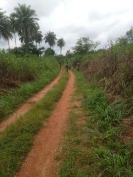 Acres of Land, Odeda, Ogun, Mixed-use Land for Sale
