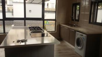 Newly Built 5 Bedrooms Full Detached, Old Ikoyi, Ikoyi, Lagos, Detached Duplex for Rent