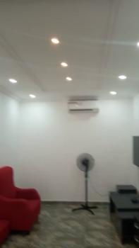 1 Bedroom Serviced Flat (shared Apartment), Agungi, Lekki, Lagos, Mini Flat for Rent