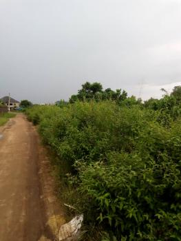 40 Plots of Land, 2mins Drive From Trinitate Secondary School, Igwuruta, Port Harcourt, Rivers, Mixed-use Land for Sale