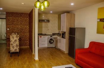 Tastefully Furnished 1 Bedroom Apartment, Off Admiralty Way, Lekki Phase 1, Lekki, Lagos, Mini Flat Short Let