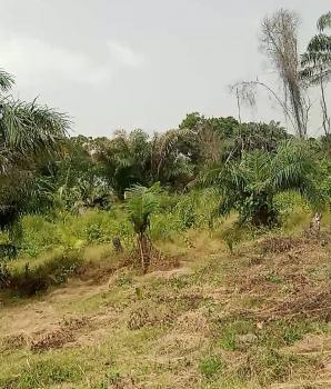 Mixed Used Property, Oreofero -arapagi,, Arapagi Oloko, Ibeju Lekki, Lagos, Mixed-use Land for Sale