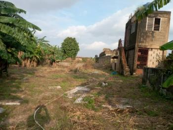 1 Acre of Land Consisting of 4rooms Farm Office, Security House with Two Water Tanks, Borehole, 9big Size Fish Ponds, 10rooms Pig, Adiyan Agbado Station, Sango Ota, Ogun, Commercial Land for Sale