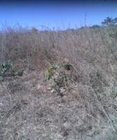 Plot of Land, Airport Road,after Nigerian Defence Academy Gate, Kaduna North, Kaduna, Residential Land for Sale