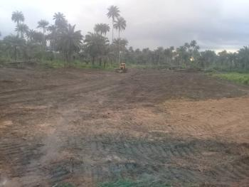 Grace Gardens Phase, Omuanwa Community, Ikwerre, Rivers, Mixed-use Land for Sale