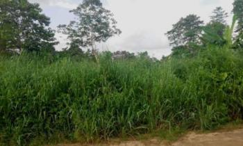 Plots of Land 100/100 Each, Ikot Eneobong Off 8-miles, Free Trade Zone, Calabar, Cross River, Mixed-use Land for Sale