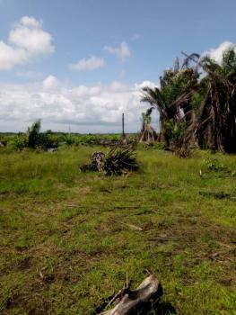 Land with Free Bag of Rice and Free Vegetable Oil, Eleranigbe, Ibeju Lekki, Lagos, Mixed-use Land for Sale