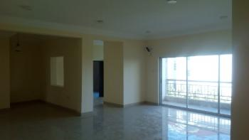 Brand New 3 Bedroom Flat with a Room Boys Qouter Large Compound Space, Katampe Extension, Katampe, Abuja, Flat for Rent